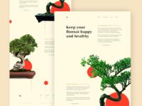 Bonsai Website