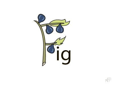 F is for Fig