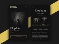 National Geographic App Concept