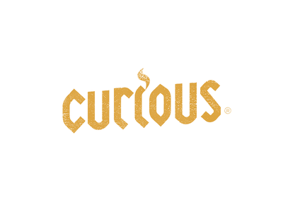 Curious Calligraphic Logo minimal clean simple design trends painted graphic design typography type branding calligraphy logo design logo