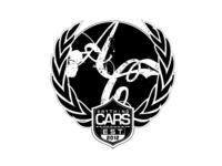 Anything Cars Logo