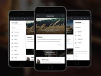Clean Mobile WordPress Theme