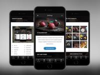 AMP Insta | Google AMP Mobile Template