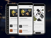 Reside   HTML Mobile Template & Google AMP Version