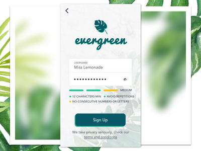 Daily UI 001/100 - Sign Up sign up register password dailyui