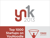Yn1k 2013 infographic sm
