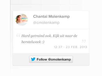 Chantal Molenkamp Sidebar Element Twitter