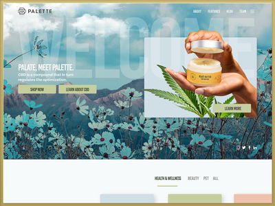 PALETTE Homepage Design website bright luxury brand cannabis xd ui design health beauty ecommerce pastel cbd web design web homepage