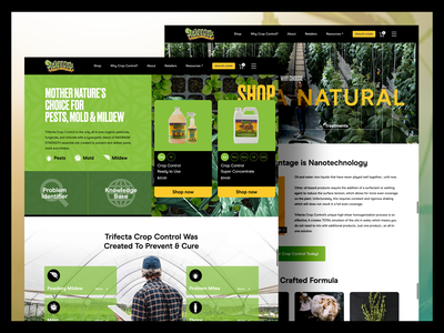 Trifecta ui bright agriculture cannabis website webdesign web