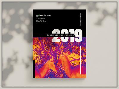 GrowersHouse 2019 Catalogue layout book africa design catalogue