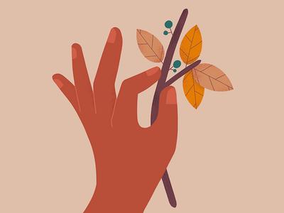 autumn colors fall.