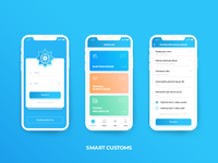 Smart Customs - UI design for State Customs Committee
