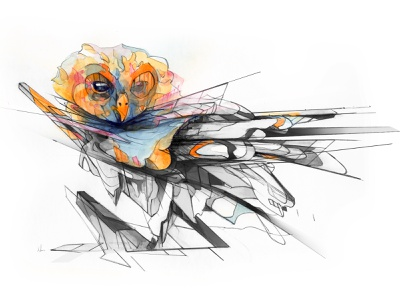 Owl 2021 mixedmedia digitalart watercolor adobe pencil drawing illustration animals animal