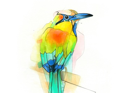 Aves markers birds parrot illustration drawing copicmarkers