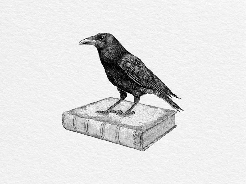 Raven print hand drawn vintage illustration raven historical book old