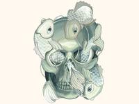 Alexander McQueen Skull