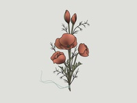 Poppy Bouquet Illustration