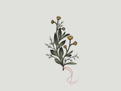 Wildflower Bouquet buttercup botanical leaves branches gradient bouquet vector art illustation wildflowers flowers