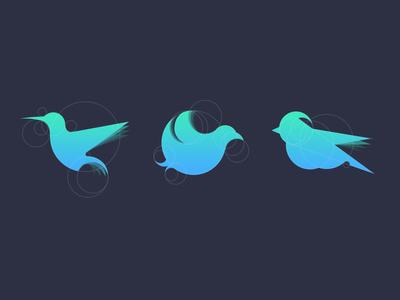 Birds hummingbird geometry golden ratio gradient brand birds logo concept identity
