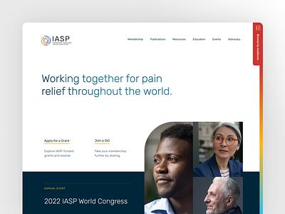 IASP (International Association for the Study of Pain) website ux ui design