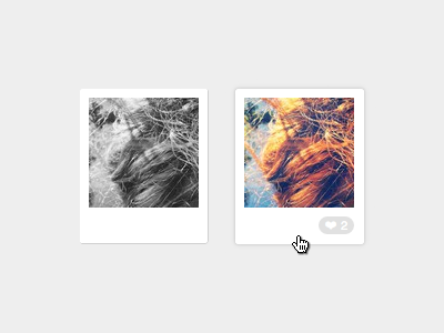 Instragram Feed polaroid photo instagram feed html css javascript