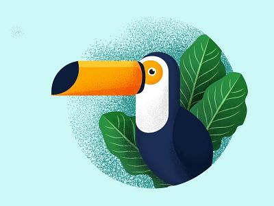 Toucan grain texture plant leaf jungle brazil animal tropic bird tropical bird toucan