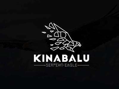 Geometric Eagle logo design logo vector branding icon design graphic design logo design modern minimalist geometric eagle design eagle logo geometric logo geometric eagle logo