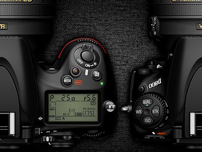 Nikon D800 nikon camera debut sanityd china