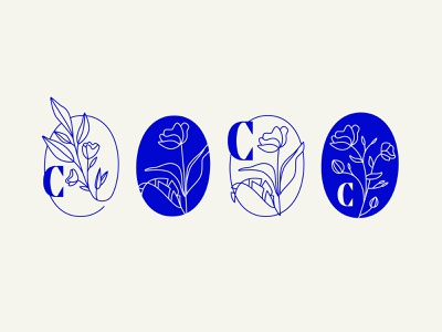 Early logo sketches packaging pattern leaves flower vector icon lettering typography logo illustration design branding