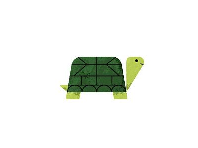 Happy Turtle turtle illustrator texture animal illustration