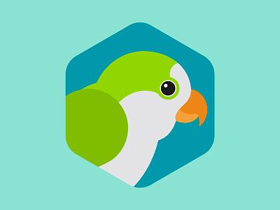 Monk Parakeet monk parrot flat texas bird audubon society illustration design