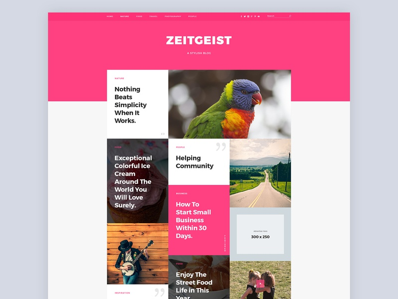 Zeitgeist Blog Website Design blog design blog wordpress theme website design web design