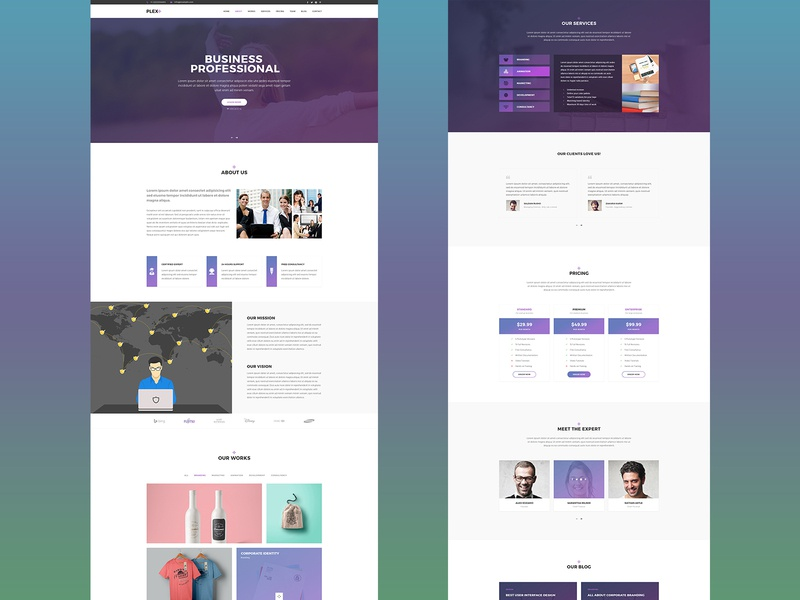 Plex: One Page Website Design for Professionals one page design profesional business business agency agency website website design web design