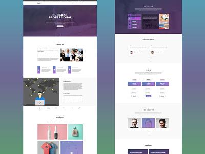 Plex: One Page Website Design for Professionals one page design profesional business business agency agency website website design web design