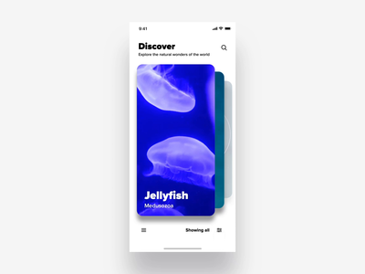 Filter interaction animation experiment