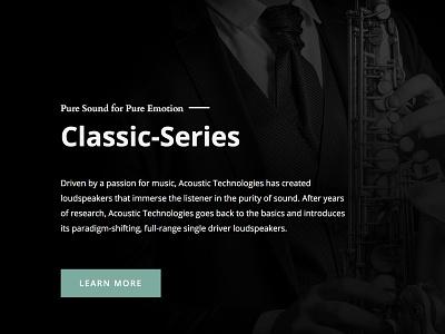 Speaker Company / Website website web design web ux ui typography site flat