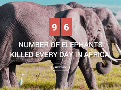 Save the Elephants wordpress themes environment green