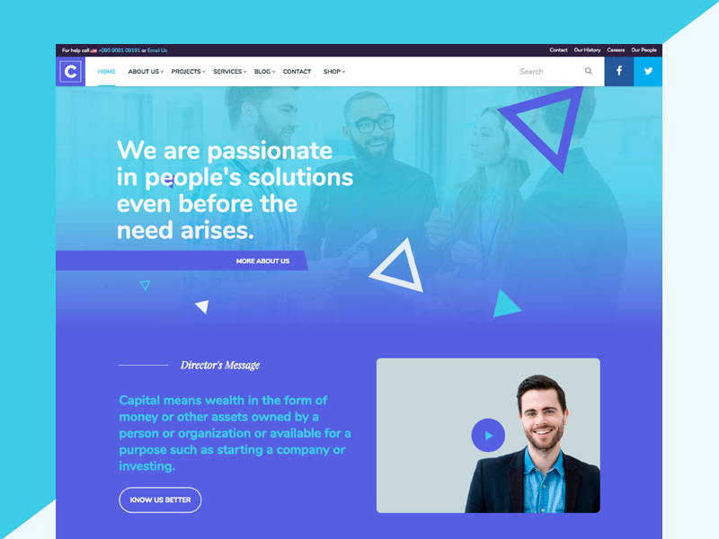 Capital Theme Variation blue consulting insurance finance html5 wordpress