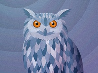 The Owl Stares