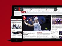 TSN Website Design