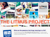 Litmus screenshot
