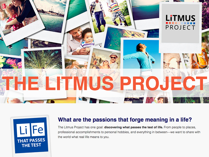 Litmus Project marketing branding web design uiux design website litmus feed social landing page social media