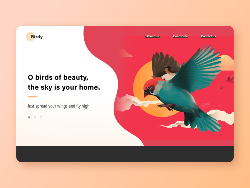 Birdy user experience concept website design red bird character design illustraion 2d landing page product design web webdesign ux ui