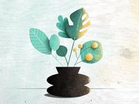 Textured Plants
