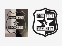 Pro-tect Security Logo
