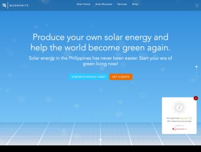 Buskowitz Website - Homepage