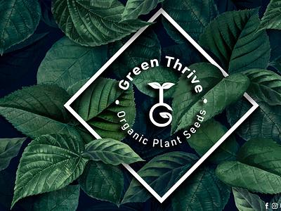 Green Thrive Logo ux ui vector illustration graphic design designer design branding art green logos logo plant plants