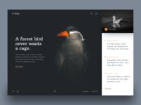 Birds Header Exploration