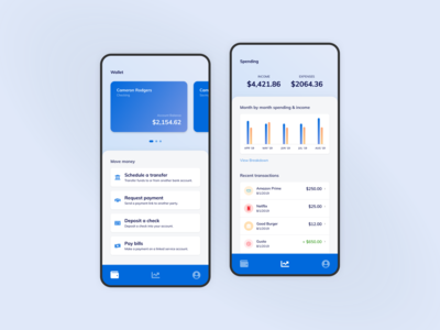 Wallet & Budgeting App Concept