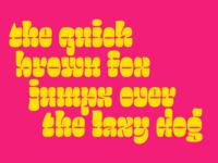 Salsero Typeface
